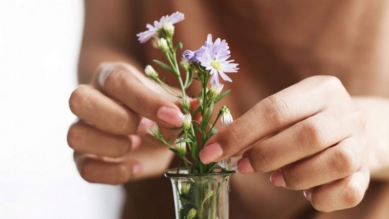 Gelin Çiçeği Dünyasına Hoşgeldiniz